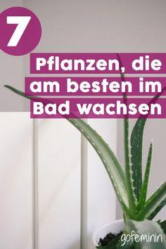 Grüne Oase: Diese 7 Pflanzen wachsen am besten im Bad! #pflanzenbad #pflanzenbadezimmer