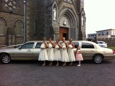 champagne-gold-limo-trim-meath