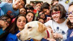 Kiara, la perra que devuelve la confianza a los niños