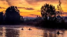 The stunning Berg River curls around two sides of the town and feeds of canals creating sheltered waterways for superb kayaking. Peace silence tranquility and lots of space to explore are only some of the terms to describe the beautiful West Coast. Canoe, West Coast, Kayaking, Curls, Tourism, River, Explore, Sunset, Peace