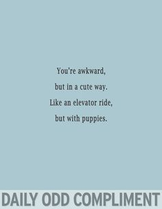 Odd Compliments Puppy Elevator