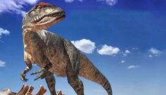 A equipe liderada pelo Dr. Gregory Poinar Jr. descobriu um fóssil de planta preservado em âmbar há 100 milhões de anos, tendo o cogumelo Ergot como parasita. O fungo e a planta evoluíram juntos e, uma vez que esta era fundamental na dieta dos dinossauros, os cientistas deduziram que, provavelmente, eles consumiam o Ergot.O cogumelo possui efeitos tóxicos e alucinógenos e, em alguns animais, causa necrose, convulsões e atrofias. Ele teria sido ingerido por dinossauros saurópodes.