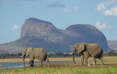 WIN A DREAM TRIP TO MOZAMBIQUE – WORTH £7,400! Competition closes at 11.59pm on 17 August 2014.