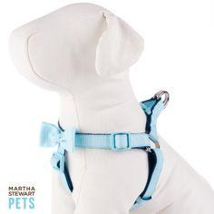 Martha Stewart Pets® Bow Dog Harness | Harnesses | PetSmart