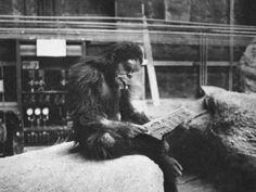 """Le chef d'oeuvre de Stanley Kubrick sorti en 1968 est encore dans toutes les mémoires. Le film """"2001 l'Odyssée de l'Espace"""", tourné au Royaume-Uni, était à l'époque l'un des plus coûteux de l'histoire"""