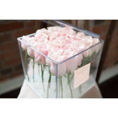 25 blush roses in a crystal acrylic box