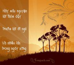 """"""" Dù họ có ăn, có uống, có ngủ say hay là bất cứ điều gì khác, và cho tới cả trong giấc ngủ sâu nhất, hương thơm lời cầu nguyện tự con tim họ vẫn tỏa bay lên không chút mệt mỏi..."""" (Diễn văn khổ chế, 85.cf. Px Nguyễn Văn Thuận, Cầu Nguyện Hy Vọng, 2000)."""