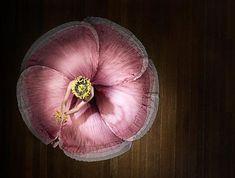 amazing flower, art, ballerina, ballet, color, conceptual - inspiring picture on Favim.com