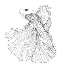 Serie de Ilustraciones en colaboración con Bryan Gallardo