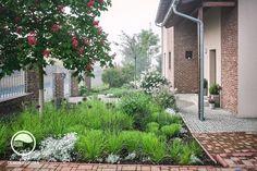 Záhrada so žabkou, Klínec   Mojinterier.sk Garden Design, Sidewalk, Outdoor Structures, Plants, Gardens, Atelier, Side Walkway, Outdoor Gardens, Walkway