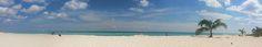 YoSoyPlaya® Playa del Carmen: Blog YOSOYPLAYA Playa del Carmen