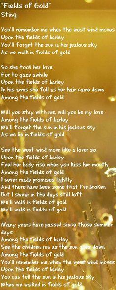 flirting with disaster american dad song lyrics meaning lyrics