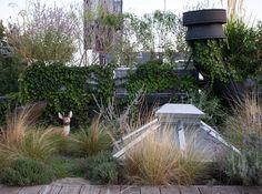 rooftop garden Urban Retreats: 10 Dreamy Rooftop G - Rooftop Terrace, Rooftop Gardens, Terrace Garden, Indoor Tropical Plants, Underground Homes, Garden Landscape Design, Garden Landscaping, Contemporary Garden, Images