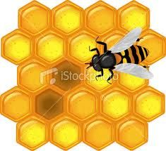 HONEY the most pure form of NATURE.