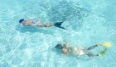 Los impresionantes fondos marinos de Jardines del Rey. Jardines del Rey, considerada una de las regiones turísticas más importantes de Cuba, sobresale, no sólo por sus bellas playas y la exuberante flora y fauna terrestres, sino también, por su naturaleza sumergida.