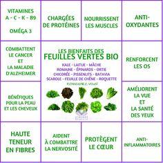 Les Bienfaits des salades et autres feuilles vertes   SALADES ET COMPAGNIE Le Monde s'Eveille Grâce à Nous Tous ♥