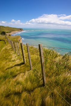 Cape Kidnappers (North Island, New Zealand) by s.v.e.n.