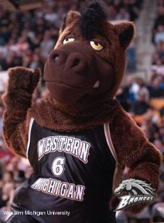 """Buster Bronco is the official mascot of Western Michigan University athletic teams. """"Born"""" in 1988, Buster is an official member of the WMU Cheer Team. Along with cheering at Bronco athletic events, Buster also makes appearances at community school, hospitals, libraries and parades. Initially Buster was a student dressed in a horse's head. After a few changes, the current Buster Bronco took the form seen today in 1991."""