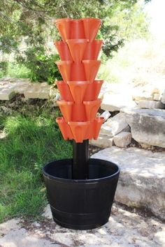 Self Watering Gardening and Hydroponics on Pinterest