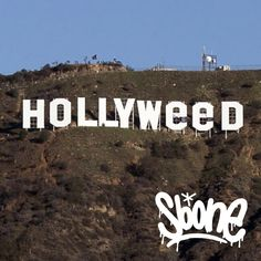 Gotta love this. HOLLYWEED #slikbone #grafitti #street #skate #stickerbomb #urbex #fuckthesystem #skateboard #streetart #stickers #streetwear #sneakers