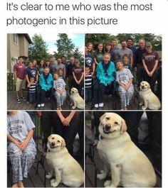 El más guapo de la familia