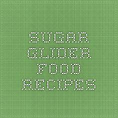 sugar glider food recipes