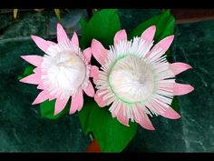 How to make Paper Flower King Protea \ Protea cynaroides (flower # Paper Origami Flowers, Crepe Paper Flowers Tutorial, How To Make Paper Flowers, Giant Paper Flowers, All Flowers, Crepe Paper Crafts, Primitive Doll Patterns, King Protea, Australian Christmas