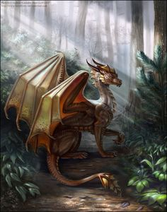 ~things I find aesthetically pleasing~ Fantasy Magical Creatures, Fantasy Creatures, Dragon's Lair, Dragon Artwork, Dragon Rider, Dragon Pictures, Dragon Design, Creature Design, Fantasy Art