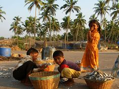 Kids sorting the daily catch on the man beach road past Palolem, India