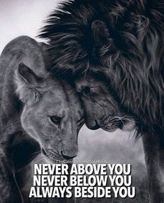 Nunca por encima de ti Nunca por debajo de ti Siempre a tu lado ❤