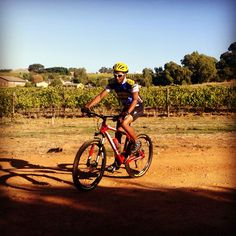 Cellar worker Nico Januarie enjoying the bicycle he has been sponsored as part of the Fairview/Giant community mountain biking program Cellar, Mountain Biking, Bicycle, Community, People, Bicycle Kick, Bicycles, People Illustration, Bmx