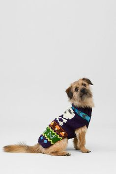 Skeleton Knit Dog Sweater