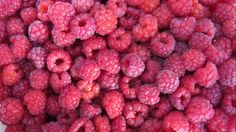 FROZEN RASPBERRY PRODUCTS RECALLED FOR NOROVIRUS. (List of retailers involved.) Several people have become ill following eat products containing the frozen berries.