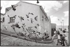 George Hallett, Birds on Signal, Picture Cape Town, Black And White Photography, Street Photography, South Africa, Contemporary Art, Birds, In This Moment, History, Artwork