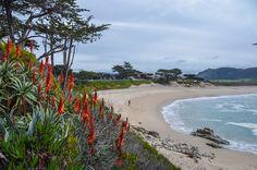 Gorgeous Carmel River State Beach | Things to do in Carmel California