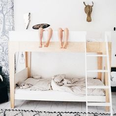 "Determine more information on ""modern bunk beds for boys room"". Have a look at our web site. Full Size Bunk Beds, Bunk Beds Small Room, Toddler Bunk Beds, Girls Bunk Beds, Bunk Bed With Desk, Bunk Bed With Trundle, Modern Bunk Beds, Bunk Beds With Stairs, Kid Beds"