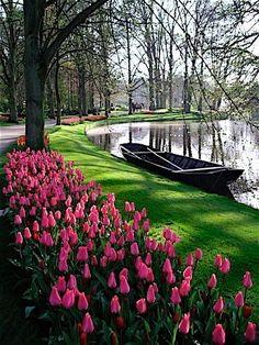 Jardín keunkefhof, a 40 kms de Ámsterdam. A través de sus 15 kilómetros de senderos se puede disfrutar de más de 7 millones de bulbos florecientes y más de 2.500 árboles de 87 especies diferentes. Ideal visitarlo en primavera.