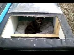 Building a winter cat house like the ones made for feral cats, if the cats get stuck outside in the rain, snow, or cold. Feral Cat Shelter, Feral Cat House, Outdoor Cat Shelter, Outdoor Cats, Feral Cats, Animal Shelter, Ikea Hacks For Cats, Cat Shelters For Winter, Winter Cat