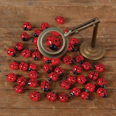 glass ladybugs