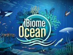 Students Explore Oceans, Wetlands with Interactive Games - Science Connected Magazine Science Textbook, Science Curriculum, Science Classroom, Science Games, Life Science, Science Ideas, Teaching Biology, Teaching Kids, Food Web Game