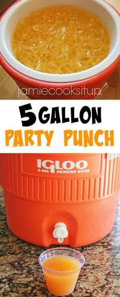 5 Gallon Party Punch from Jamie Cooks It Up! Fantastically fruity and tropical tasting this punch is perfect for large gatherings and will serve 80 8 ounce servings. Great for birthday parties family reunions scout camps youth conferences and girls camp. Alcoholic Punch, Non Alcoholic Drinks, Alcholic Drinks, Kid Drinks, Frozen Drinks, Cooking For A Crowd, Food For A Crowd, Cooking Light, Party Punch Recipes
