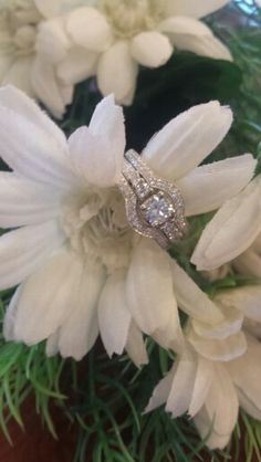 Diamond engagement ring with guard