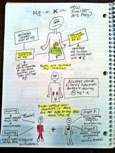 Electrolyte imbalances: Mg & K