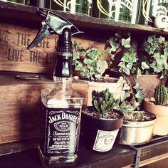 花瓶や照明など、おしゃれなインテリアに。空き瓶を使ったリメイク術 - Spotlight (スポットライト)