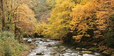 Smoky Mountain Travel Guides - Bryson City, Cherokee, Fontana Lake, Nantahala River - NC Vacation Guides...Great Smoky Mountains