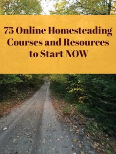 Check out this big list of free or cheap online homesteading courses and resources to start now! Off Grid Homestead, Homestead Farm, Homestead Survival, Survival Skills, Survival Tips, Wilderness Survival, Camping Survival, Emergency Preparedness, Gardening Courses