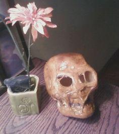 Decaying Skull