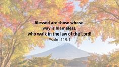 20 Bible Verses About Being Blessed and Thankful - Isaiah 12, Psalm 95, Proverbs 10, Be Exalted, Blessed Are Those, Peace Of God, Bless The Lord, Guard Your Heart, The Lord Is Good