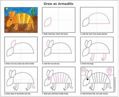 How to draw and Armadillo. PDF tutorial included.