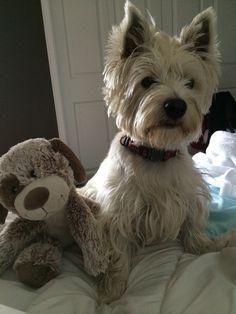 Phoebe hangin with her stuffed animal buddy!